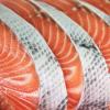 SalmonSliced
